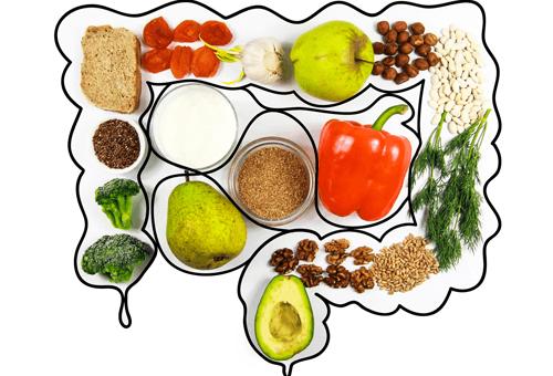 Bağırsak Sağlığı ve Beslenme