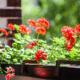 Zehirsiz Bitki Koruma